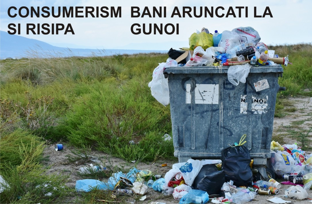 3.Minimalist in Romania - Consumerism si risipa