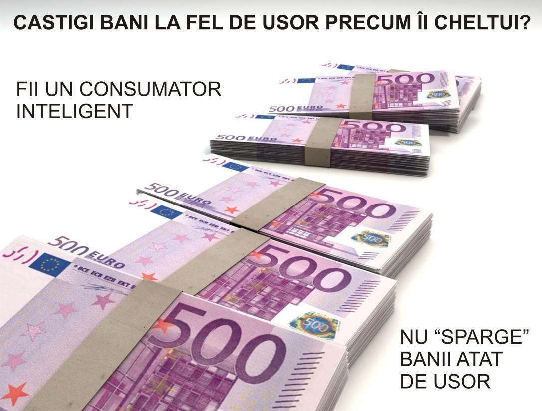 5.Minimalist in Romania - Castigi bani la fel de usor precum ii cheltui